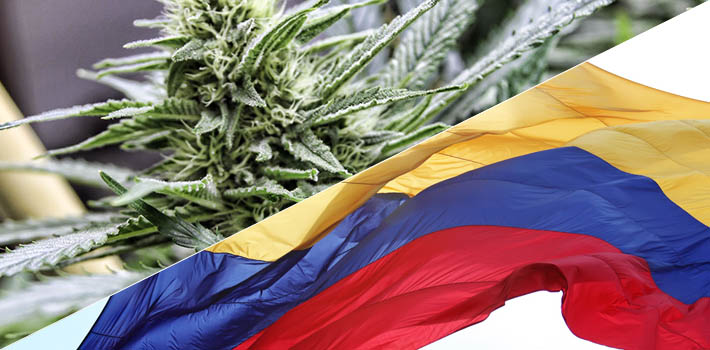 Colombia esta cerca de legalizar el uso medicinal de la marihuana
