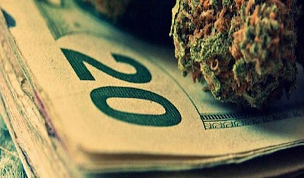 Saturación de dinero de la marihuana medicinal en California