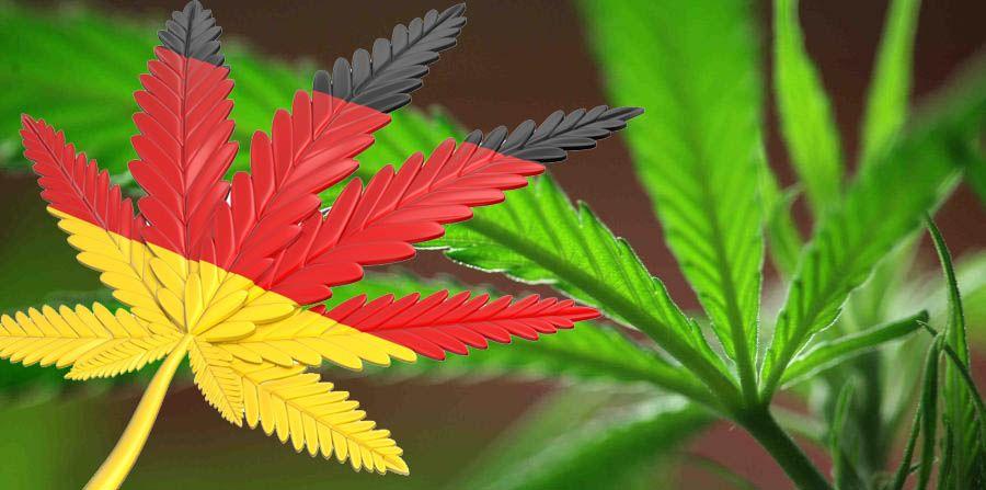 Alemania regula la marihuana medicinal