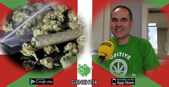 Regulación de los clubes de cannabis en Bilbao