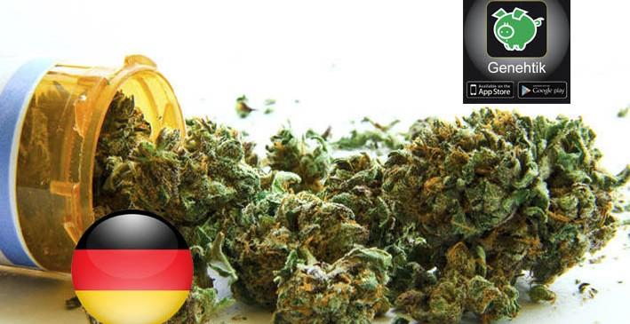 En Alemania se financian los tratamientos con cannabis