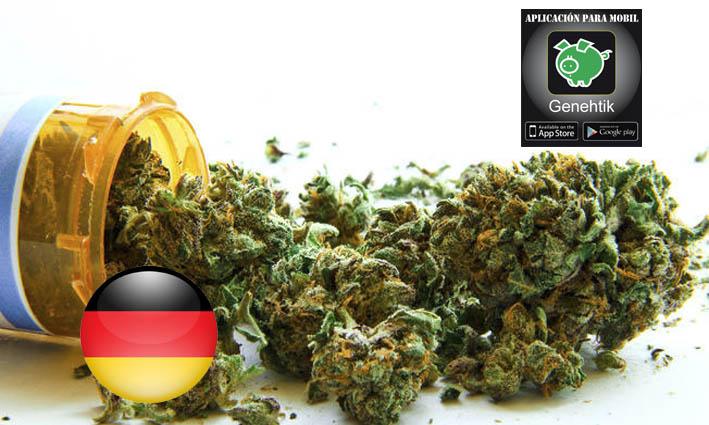 Alemania financiará los tratamientos con cannabis