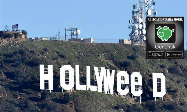 Cambian el cartel de Hollywood por Hollyweed para celebrar la legalización de la marihuana en California