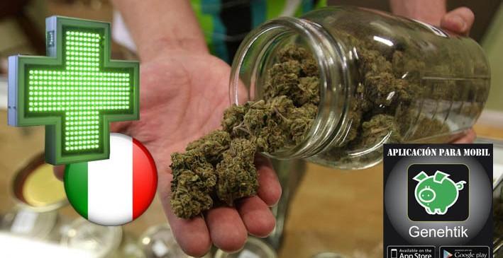 Venta de marihuana en las farmacias de Italia