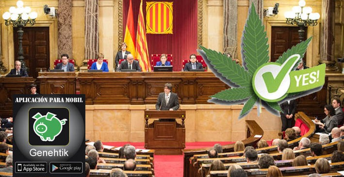 Cataluña regula el consumo, cultivo y transporte de cannabis