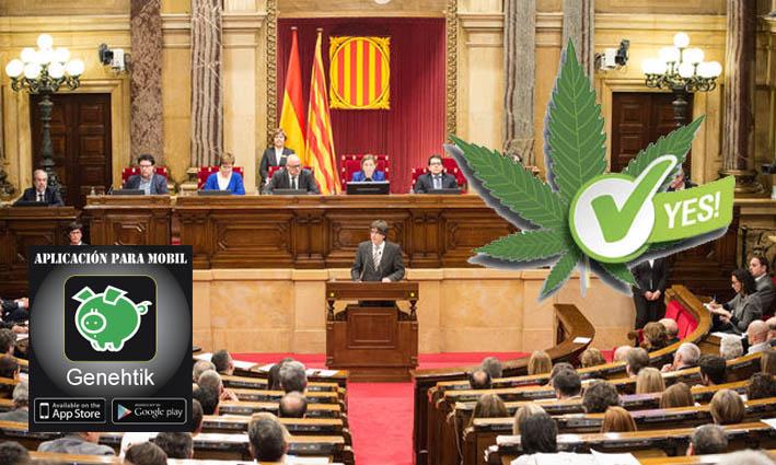 Cataluña regula el consumo, cultivo y el transporte de cannabis