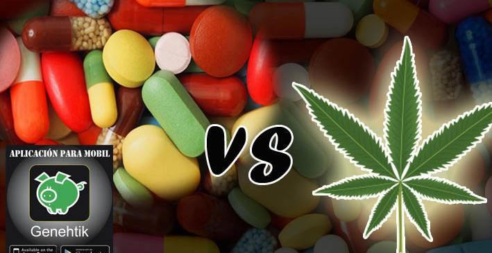 El cannabis previene el consumo de otras drogas