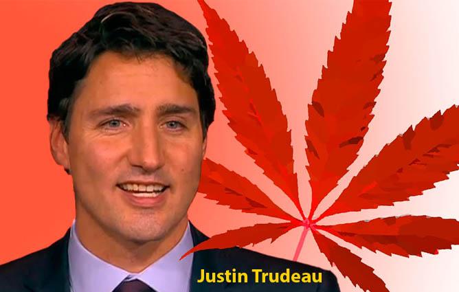 Justin Trudeau promete en campaña la legalización de la marihuana en Canadá