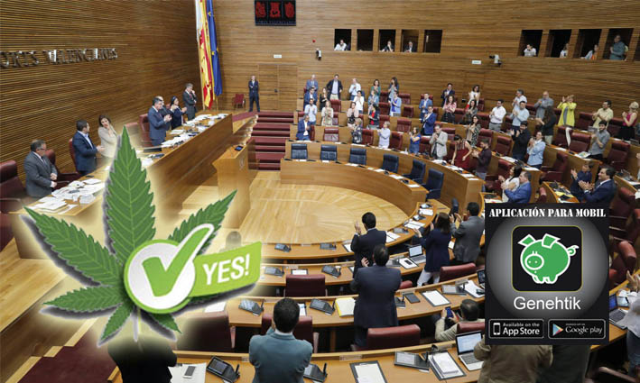 Las Cortes Valencianas han votado para la regulación del cannabis