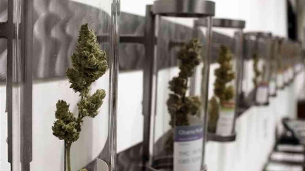 Se inicia la venta de marihuana para fines recreativos en Oregon