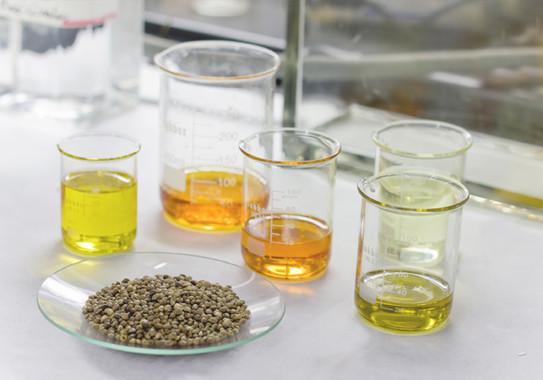 El aceite de cannabis resulta eficaz para tratar la fibromialgia