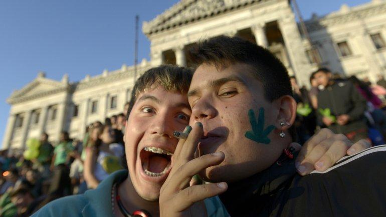 fumar marihuana con moderación en la adolescencia no afecta directamente al rendimiento intelectual.