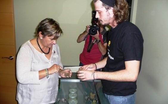 El Parlamento defiende la Ley reguladora de los colectivos de usuarios de cannabis en Navarra