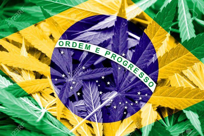 Brasil aprueba el uso de marihuana medicinal