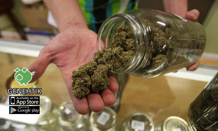 Abre sus puertas el primer dispensario de marihuana medicinal en Florida