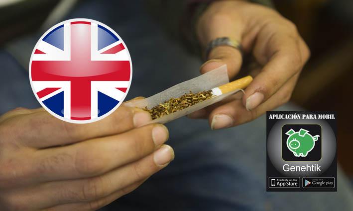 reino-unido-legalizar-marihuana