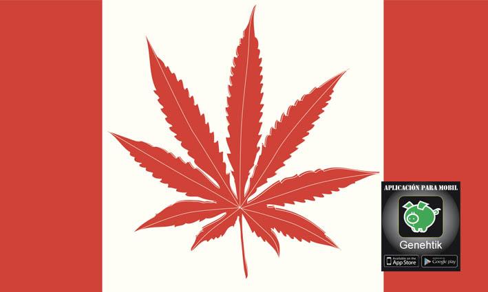 Marihuana legal en Canada en 2018