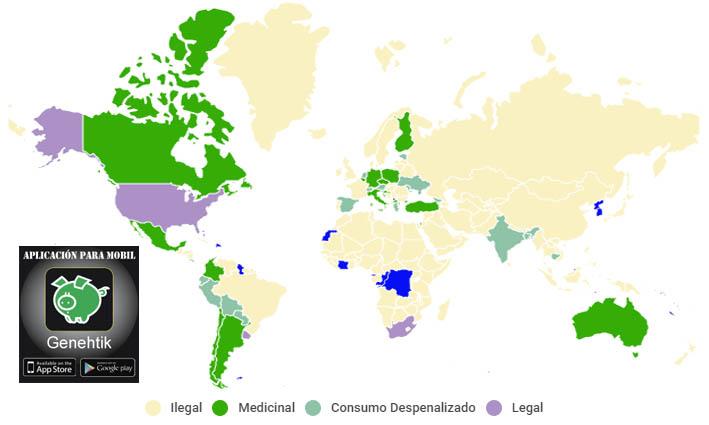 Estado de la regulación del cannabis en el mundo y en Estado Unidos
