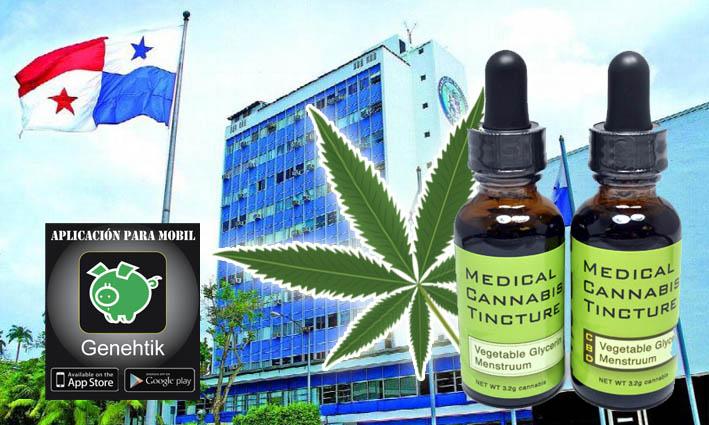 Iniciativa legislativa para legalizar la marihuana en Panaá