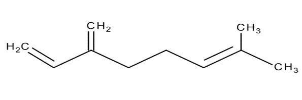 El mirceno es el terpeno que aumenta el efecto del cannabis en el cerebro