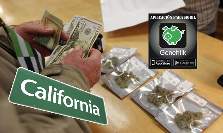La marihuana recreativa ya es legal en California
