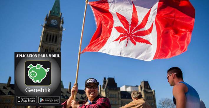 Canadá aprueba el uso recreativo de marihuana