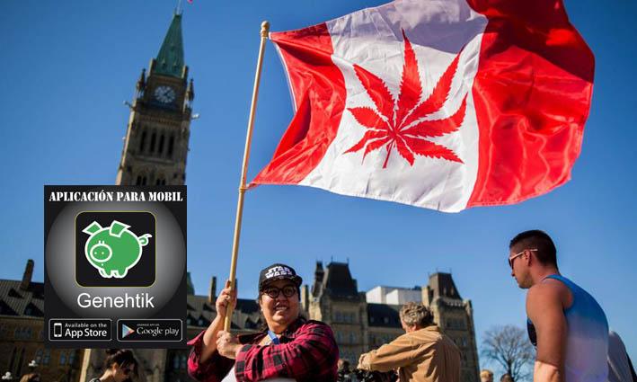 Canadá legaliza el uso recreativo de marihuana