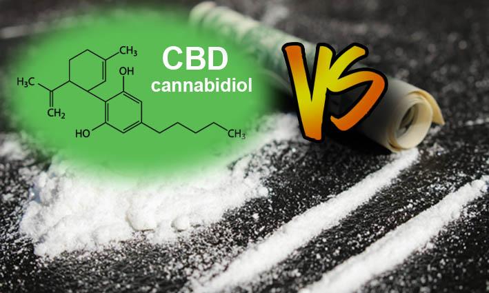 El CBD atenua la adicción a la cocaína