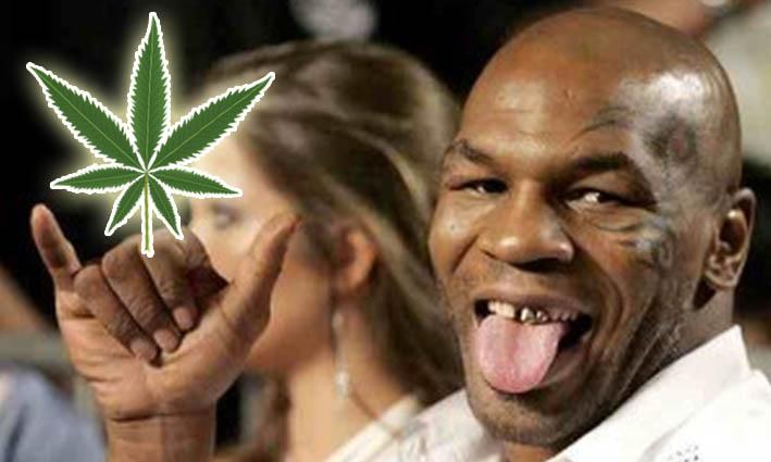 Mike Tyson convierte su vida como agricultor de marihuana en serie de televisión