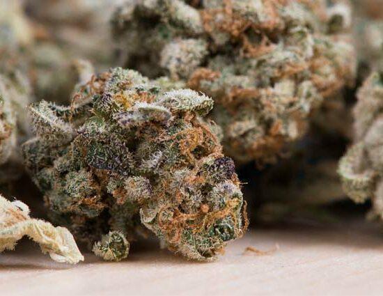 Curado de la marihuana
