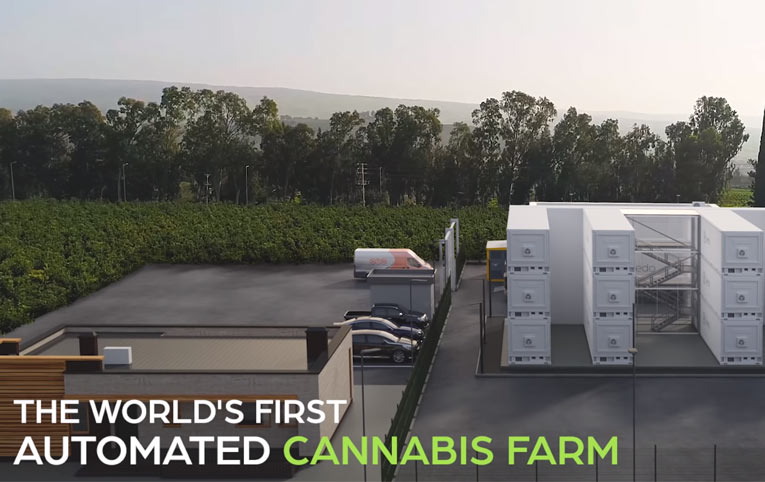 Primera granja de marihuana automatizada