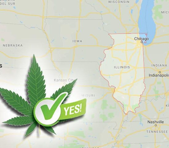 Illinois aprueba el consumo recreativo de cannabis