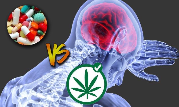 cannabis analgesico para el dolor
