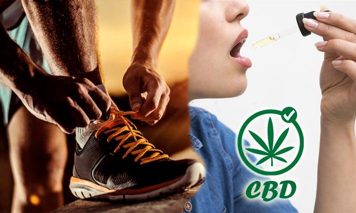 EL cbd es legal para los deportistas